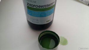 Масляный раствор хлорофиллипта от стоматита